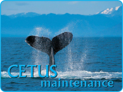 logo CETUS maintenance